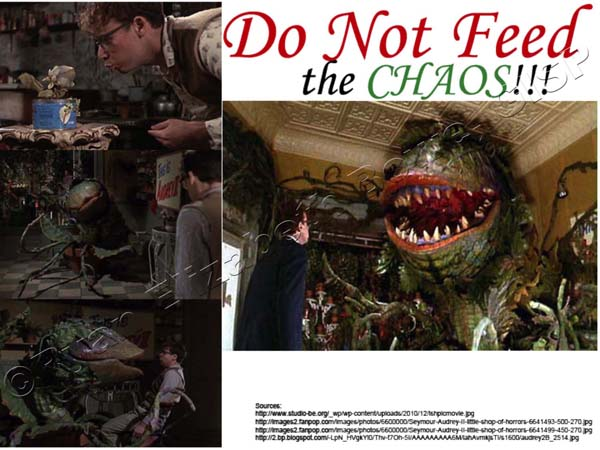 Do Not Feed the Chaos